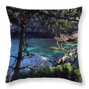 A Beautiful Cove At Point Lobos Throw Pillow