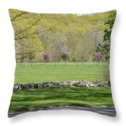 A Beautiful Landscape Throw Pillow