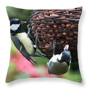 A Beautiful Pair Of Tits Throw Pillow