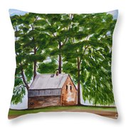 A Beautiful Place On Earth Throw Pillow
