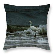 A Beautiful Snowy White Egret On Hilton Head Island Beach Throw Pillow