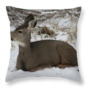 A Bed Of Snow Throw Pillow