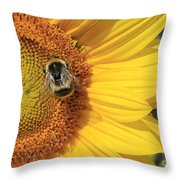 A Bee Gathering Pollen On A Sun Flower Throw Pillow