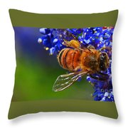 A Bee's Life Throw Pillow