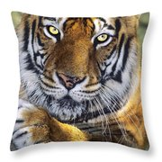 A Bengal Tiger Portrait Endangered Species Wildlife Rescue Throw Pillow