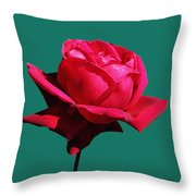 A Big Red Rose Throw Pillow