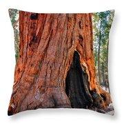 A Big Tree Throw Pillow