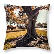 A Big  Tree Trunk Of Long Beach In The Autumn Throw Pillow