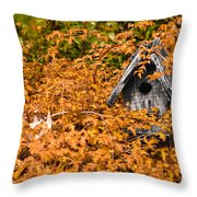 A Bird House Sits Empty In Fall Throw Pillow