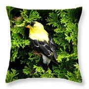 A Bird In The Bush Throw Pillow