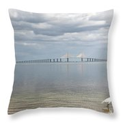A Bird Stands Reflected In The Waters Throw Pillow