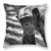 A Bit Like Us V5 Throw Pillow