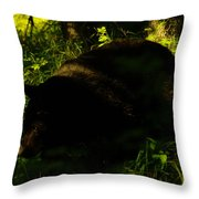 A Black Bear Throw Pillow