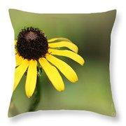 A Black Eyed Susan Throw Pillow