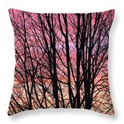 A Blast Of Color Throw Pillow