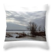 A Bleak Midwinter Day Throw Pillow