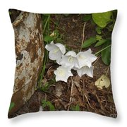 A Bloom In Time Throw Pillow