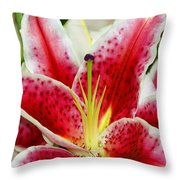 A Blooming Flower Throw Pillow by Raven Regan
