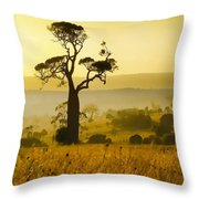 A Boab Sunrise Throw Pillow