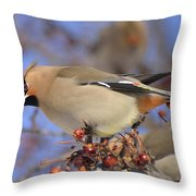 A Bohemian Experience Throw Pillow