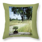A Bonsai Tree In A Hayfield Throw Pillow