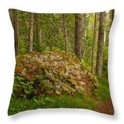 A Boulder In The Rainforest Throw Pillow