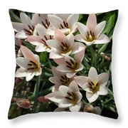 A Bouquet Of Miniature Tulips Celebrating The Spring Season - Vertical Throw Pillow