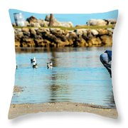 A Boy Searches The Water At Matheson Throw Pillow