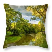 A Brief Journey 3 Throw Pillow
