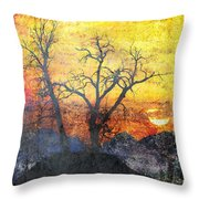 A Brilliant Observer Of Life Throw Pillow by Brett Pfister