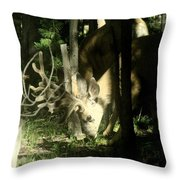 A Buck Deer Grazes Throw Pillow