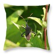 A Bugs Life  Throw Pillow