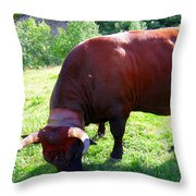 A Bull  Grazing On The Meadow Throw Pillow