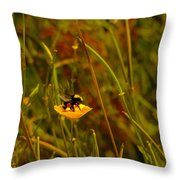 A Bumble In A Cup Throw Pillow