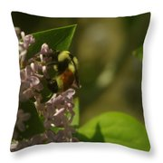 A Bumble Throw Pillow