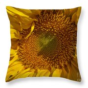 A Burst Of Sun Throw Pillow