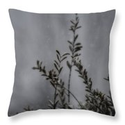A Bush In Snow Throw Pillow