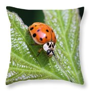 A Busy Lady Throw Pillow