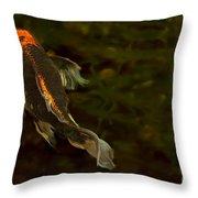 A Butterfly Throw Pillow