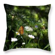 A Butterfly's World Throw Pillow by Belinda Greb
