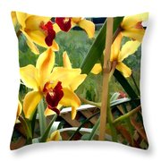 A Cage Of Canary Cymbidiums Throw Pillow