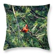 A Cardinal Rule Throw Pillow