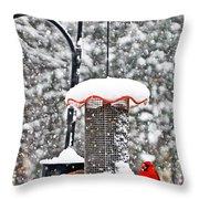 A Cardinal Winter Throw Pillow