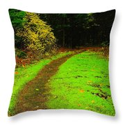A Carpted Path Throw Pillow