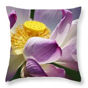A Casual Water Lily Throw Pillow