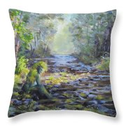 A Chance Encounter With Mossman Throw Pillow