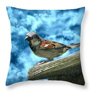 A Chance Of Showers Throw Pillow