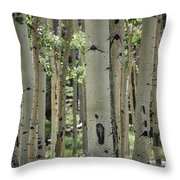 A Change Of Weather  Throw Pillow