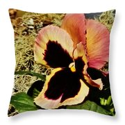 A Charming Pansy Throw Pillow