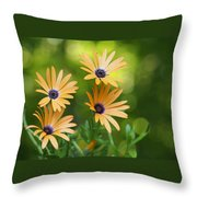 A Cheerful Symphony Throw Pillow